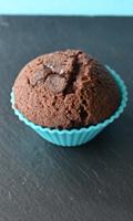 Petits gâteaux au chocolat et aux pépites de chocolat à la fleur de sel
